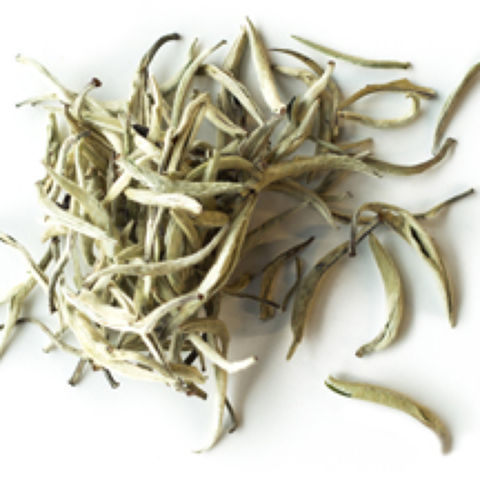 Yunnan Silver Needles Single Cultivar Da Huang Ya